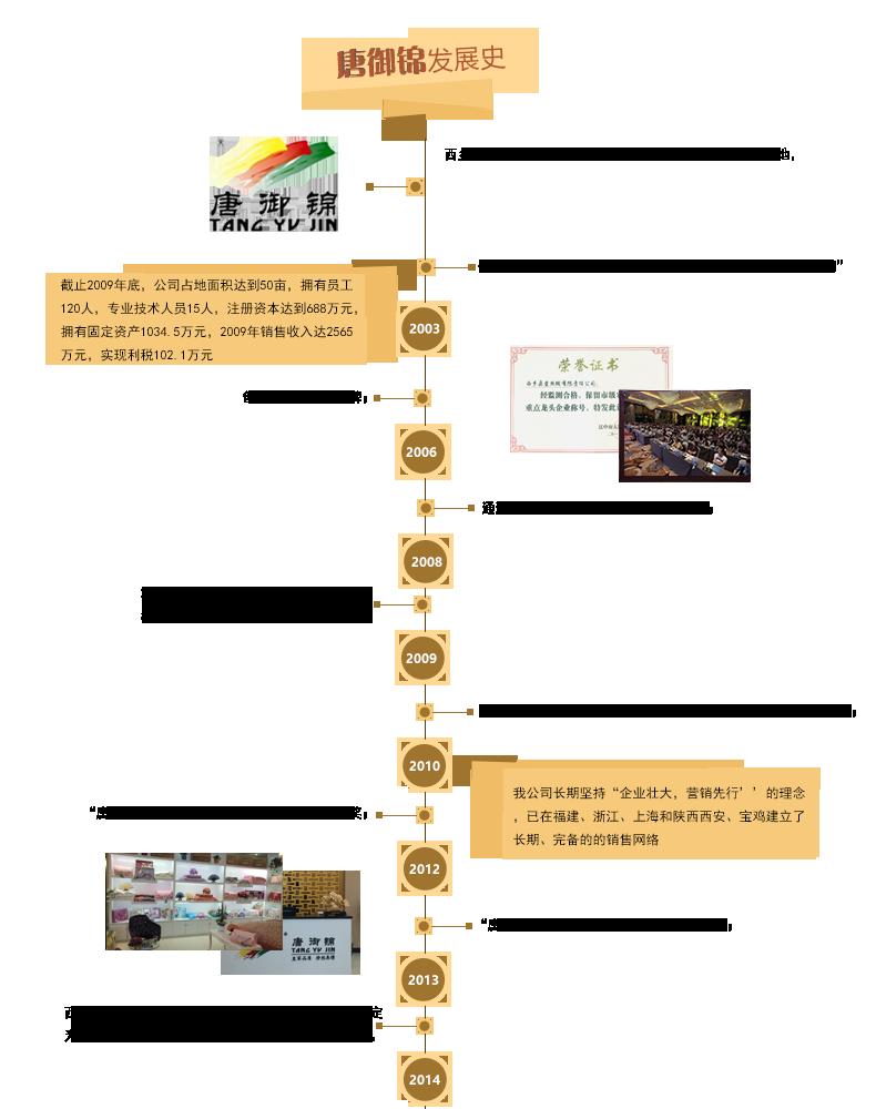 品牌ppt的结构图